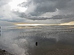 A Thunderstorm Sweeps out to the Gulf (kthypryn) Tags: storm gulfofmexico water rain weather clouds florida horizon thunderstorm saltwater crystalbeach 9413