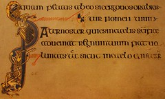 Typography (mcginley2012) Tags: ireland lines typography letters illumination font celtic script manuscript reproduction ornamentation paternoster thebookofkells macromondays