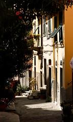 Cinque Terre / Charming (Pieterjan Hanselaer) Tags: italy riomaggiore itali