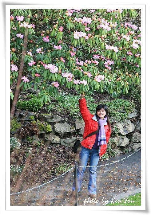 o1781094333_加拿大blog_450.jp