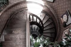 Escaleras. (just.g) Tags: architecture stairs arquitectura bogota espiral escaleras aurea