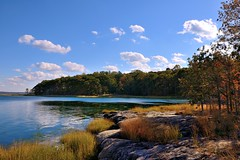 The View from Two Trees Island (Eddie C3) Tags: newyorkcity autumn newyork nature pelhambaypark longislandsound autumncolor nycparks naturewalks joetwotrees hunterislandmarinesanctuary