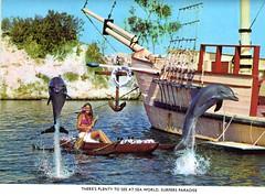 Surfers Paradise 2 (Arboraphobiaville) Tags: world sea paradise postcard australia scan card dolphins queensland surfers
