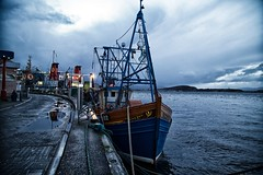 Day 334 - Dawn Maid (William Adam) Tags: sea seagulls monument wet ferry puddle lights evening scotland boat day cloudy harbour knot cobblestone oban ropes yachts tied bouy nets westcoast caledonianmacbrayne puddlereflection williamadam dawnmaid ob102