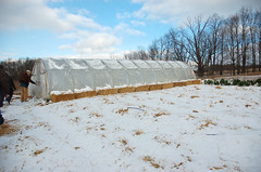 "Hoop House <a style=""margin-left:10px; font-size:0.8em;"" href=""http://www.flickr.com/photos/91915217@N00/11283254144/"" target=""_blank"">@flickr</a>"