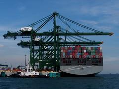 Pasir Panjang (tord75) Tags: sea water port singapore ship harbour 2013 therealsingapore