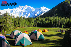 Fairy Meadows Camping Area (Humza Bin Yousuf) Tags: camping nature landscape photography day vibrant meadows fairy