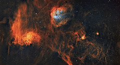 IC410, IC405, IC417 and NGC1931 (The tadpoles Flaming star, spider and fly) in colour (s