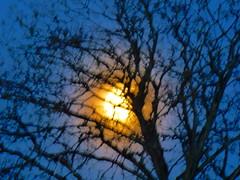 P1020451trav (pascalpiette) Tags: leica city red cloud sol clouds sunrise lumix soleil belgium belgique alba cities down du jour panasonic amanecer aurora wee hours raymond pascal towns huy octave heure lever bleue aurore aube piette dmcfz72 18012014