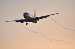 [07:15] KL1001 AMS-LHR (A380spotter) Tags: condensation moisture water vapour approach landing finals shortfinals boeing 737 800wl phbxw patrijs partridge xw316 klmroyaldutchairlines klm kl kl1001 amslhr runway27r 27r london heathrow egll lhr