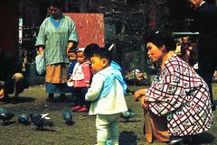 Feeding birds (bokage) Tags: japan tokyo child yukata kimono bokage