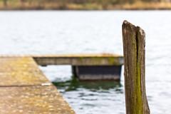 Teistungen Dam::: (:: Blende 22 ::) Tags: wood trees lake water canon germany deutschland thringen spring wasser thuringia holz bume frhling steg stausee ef100mmf28macrousm eichsfeld canon50d canoneosd teistungen