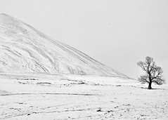 Lost in monochrome (transfixphotography81) Tags: winter bw mountain mountains monochrome scotland blackwhite highlands nikon hills capricorn cairngorms munro munroes carnliath d90 nikond90