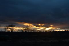 DSC_0895 (chrisdunsdon) Tags: trees light sunset sky sun clouds landscape fire evening nikon low d5100