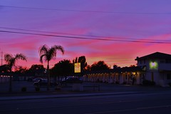 Royal 8 Inn (rickele) Tags: sunset dusk motel palmtrees sacramento livedin monthlyrates stocktonboulevard plasticsign southsacramento notell southsac weeklyrates stocktonblvd oldus99 usroute99 royal8inn