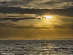 """""""Un tramonto è un fenomeno intellettuale"""" - Fernando Pessoa (HDR) (PietroEsse) Tags: sunset sea landscape tramonto mare hdr castellammaredistabia canonpowershots3is"""