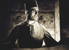 mummy (V1ntag3Nut) Tags: monster boris universal mummy karloff