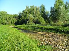 Pouill (Loir-et-Cher) (sybarite48) Tags: france rio ro river fiume rivire drought seca fluss sequa loiretcher rivier nehir   rzeka dryness  trockenheit droogte  siccit scheresse susza    kuraklk pouill