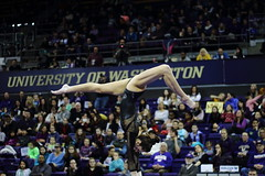2017-02-11 UW vs ASU 129 (Susie Boyland) Tags: gymnastics uw huskies washington