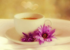 For the love of tea. ☕ 💕 (Through Serena's Lens) Tags: odc withafloweronit teacup bokeh floral purple softfocus cloth white tabletop stilllife 7dwf