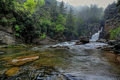 Linville Falls  20/52 (Danny Buxton) Tags: nature canon river waterfall nc mark ridge national 5d ferns cascade burke ii fiddleheads blue county parkway canon falls 2013 north forest carolina burke linville pisgah 24mm105mm