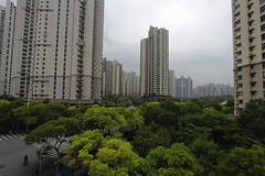 Hongkou (vonSchnitzenberg) Tags: china city travel trees urban tree green shanghai traveller highrise vegetation urbane hongkou urbanisation zup zhongtanlu zhongtan zhongtanroad zoneurbanisprioritise