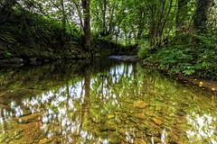 Still water runs Shallow (Paul McDowell 23) Tags: uk trees sky reflection mill water race canon river landscape rocks sigma northernireland foilage ulster coantrim canon500d sigma1020 2013 sigma1020mmf456exdchsmapsc paulmcdowellphotography