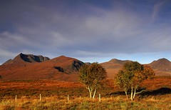 Mountain_trees (teuchter10) Tags: trees mountains reeds blues yellows reds davidson scenes autumnal lochan greig