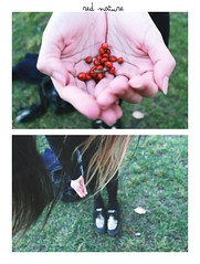 Red nature. (sunlight cardigan) Tags: trees winter red white cute green love nature girl beautiful grass fashion canon hair pretty afternoon hand skin pale blonde lovely creepers t3i