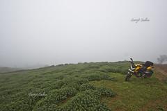 Foggy Mandalpetti (surojit666) Tags: travel india nature canon landscape wideangle roadtrip kerala biking motorcycle touring 600d greennature flickrrides