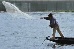 Espoir en vol ..... (Hélène Quintaine) Tags: france eau centre filet pêcheur loire barque fleuve orléans pêche festivaldeloire
