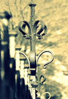 _the crown of the fence