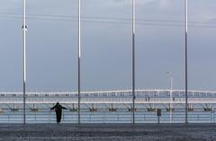Serendipity #2 (Canadapt) Tags: bridge sky portugal sailboat river lisbon seagull rosa tram poles mast causeway parquedasnações canadapt