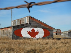 Happy Canada Day Weekend  #Canadiana  #happycanada150 (Mr. Happy Face - Peace :)) Tags: canada art love barn fence wire artwork rust mural artist peace quote metallic flag postcard urbandecay explorer ngc rustic canadian explore mapleleaf wired grasses patriotism fenced barbed flickrfriends oval heritagebuilding artworks canadiana topsecret farmlife ohcanada eyecatching hss signpainting hff pioneerdays travelalberta ranche southernalberta jimmyb cans2s mrhappyface fencefriday happyfencefriday mrshappyface villageslandscapecountryside skycloudwind albertafavorite
