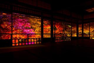 瑠璃光院 - 秋の夜間特別拝観 / Rurikou-in Komyo-ji Temple