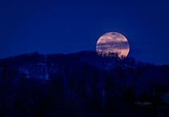 Valentine's Full Snow Moon Rising - Roanoke 2014 (Terry Aldhizer) Tags: winter sky moon mountain snow rising day snowstorm valentine full terry valentines february rise snowcap aldhizer terryaldhizer terryaldhizercom