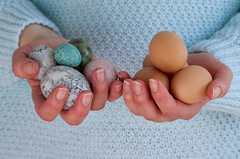 Eggs (Mukumbura) Tags: woman chicken stone carved holding hands fingers eggs choice laid handful