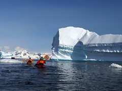 Antarctica (Dan Cosmin) Tags: blue sun ice water landscape penguin penguins kayak outdoor south antarctica seal kayaking whale iceberg
