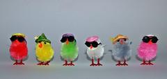 Coole Kcken! (ingrid eulenfan) Tags: fun stillleben lustig ostern spass sonnenbrille frhling spas kcken