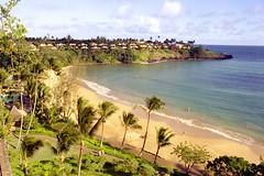 pl04oct81lih36 (lanpie012000) Tags: usa hawaii kauai lihue tatsunis