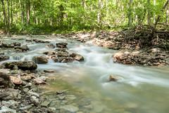 DSC_1664 (Deamas Fotografi) Tags: ohio fall water yellow speed river flow waterfall spring stream long exposure foto slow glen helen springs shutter oh fotografic deamas deamasfoto