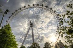 London Eye from Jubilee Gardens Park-11 (FitzinCC) Tags: londonhdr