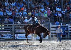 P3110209 (David W. Burrows) Tags: cowboys cowgirls horses cattle bullriding saddlebronc cowboy boots ranch florida ranching children girls boys hats clown bullfighters bullfighting