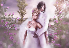 The best Day in our Live (♣ ♢ ♠ ♡ chopay ♣ ♢ ♠ ♡) Tags: wedding hochzeit white roses trees picture elegant suit dress
