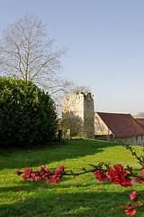 Vestige Tour d'enceinte 2 (Ombre&Lumiere) Tags: aisne picardie patrimoine vestiges ruines 02 ancienneabbayefortifiée tourdenceinte fortifications xiiie xive xviie xve