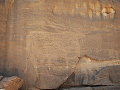 Chad Tibesti NE (ursulazrich) Tags: tschad chad ciad tchad sahara desert tibesti rockart engraving gravur petroglyph cow cattle vieh petroglyphe petroglyphs sahel africa afrika afrique kuh rind stier