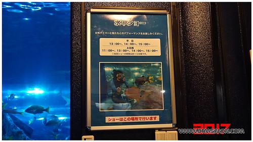 品川水族館37-1.jpg