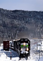 Centrebeams in the siding (Michael Berry Railfan) Tags: nouvelleouest train freighttrain windmilltrain sociétéduchemindeferdelagaspésie sfg1819 sfg snow winter gaspesie quebec