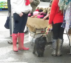 More wellie wearers (petelovespurple) Tags: wellies candid girls