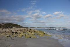 Vivonne Bay beach (cathm2) Tags: australia sa southaustralia kangarooisland vivonne bay beach sand shore sea travel coast